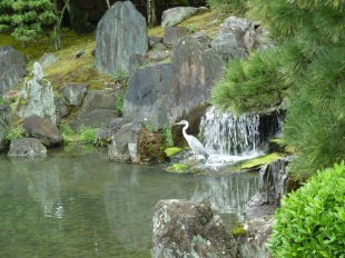 reiger nijojo garden