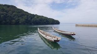 Minamata bay
