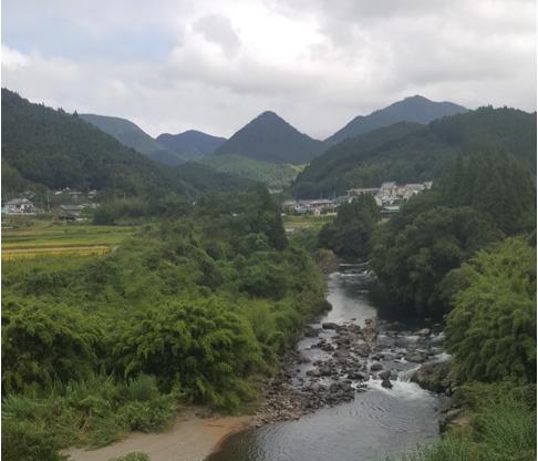 minamata river
