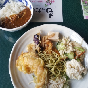 my first serving at the Konohana buffet