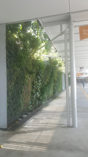 vertical garden at Shinyamaguchi station