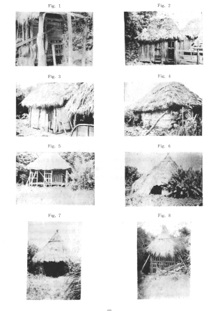 Pictures of home confinement on the Amami Islands - by Sato Mikimasa http://akihitosuzuki.hatenadiary.jp/entry/2007/06/02/001709